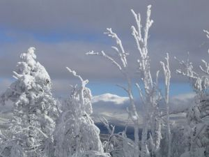 "Susan Mitchel ""Winter--Mount Washington"""